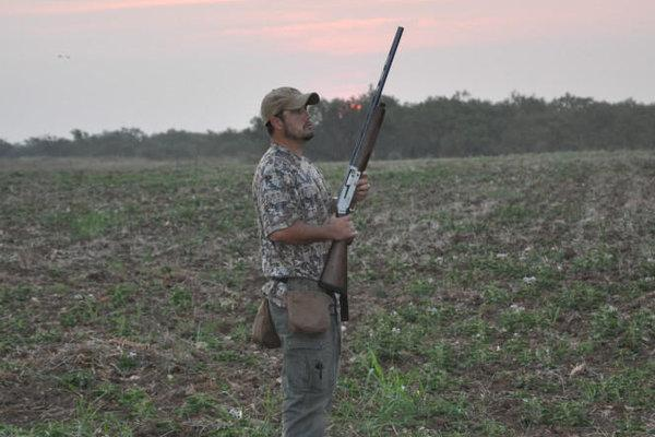Dove Hunting Package Rates