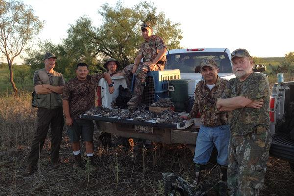 Texas Dove Hunts